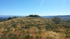 Paisaje ruta de los molinos de San Miguel Vineyard, Outdoor, San Miguel, Paths, Scenery, Fotografia, Outdoors, Vine Yard, Vineyard Vines
