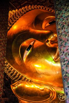 This #Reclining #Buddha was so big that Rachel couldn't even take a complete picture of it! http://www.drransdellnovels.com