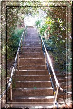 bisbee arizona stair cases photos  | Some of the stairs for the Bisbee 1000 stair climb challenge
