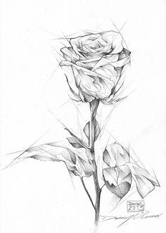 Copy Paper Challenge by Danny O'connor Floral Illustrations, Pencil Illustration, Illustrations Posters, Pencil Portrait Drawing, Pencil Art, Graphite Art, Doodles, Art Pictures, New Art