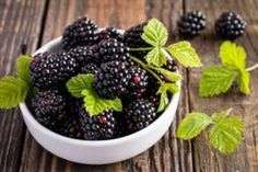 The Ultimate Blackberry Wine Recipe Blackberry Wine, Blackberry Plants, Blackberry Recipes, Homemade Wine Recipes, Healthy Diet Recipes, Healthy Food, Drinks Alcohol Recipes, Survival Food, Alcoholic Drink Recipes