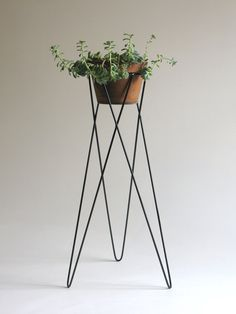 Mr Kitly Steel Plant Stand - cross over leg - maybe we could make something like this only taller