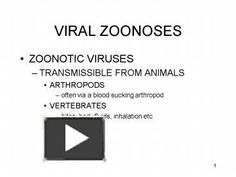 VIRAL ZOONOSES