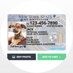 TagsForHope creates the cutest pet ID tags that keep your pets safe. Order today for fast manufacturing and shipping! Dog Tags Pet, Pet Dogs, Doggies, Rare Animals, Animals And Pets, Reactive Dog, Dog Pin, Pet Safe, China
