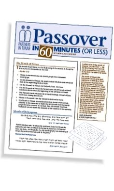 Passover in 60 minutes or less.  (But WHY on earth would you want to diminish the enchantment of the evening?  It's still Pesach the whole 24 hours!)