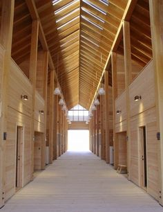 How to design natural light in your sustainable horse barn