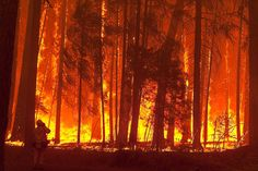 State of emergency declared in wildfire near Yosemite - Framework - Photos and Video - Visual Storytelling from the Los Angeles Times