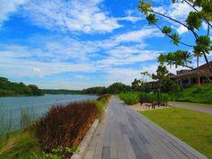 At Punggol Park, along the Serangoon River