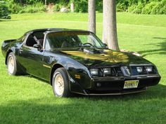 1979 Pontiac Trans Am, the exact one from Smokey and The Bandit.  Classic.