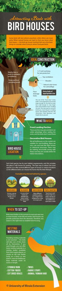 Attracting Birds with Bird Houses (Infographic) #garden #yard #wildlife