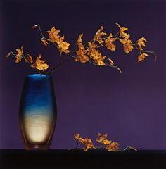 Flowers in Vase by Robert Mapplethorpe