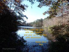 Psalm 65:11