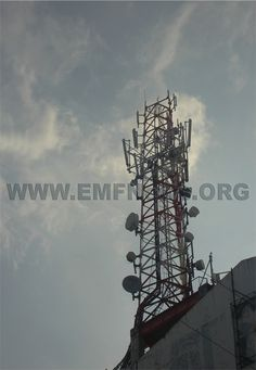 Wireless towers cell phone frequencies electromagnetic energy are cell phones dangerous cordless phones brain tumors electromagnetic radiation phones.