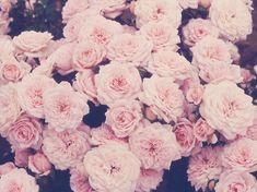 Indie Vintage Floral Background | Flower Background tumblr | wallpaper, wallpaper hd, background desktop ...