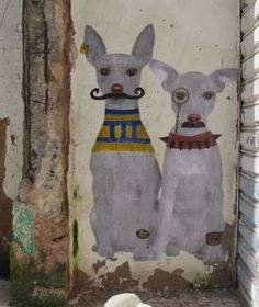 Freedom Brothers, Salvador