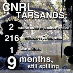 CNRL tar sands spill