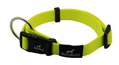 MY PET Dog Collar Design for Pet Cat Puppy Pitbull Bulldog Adjustable Outdoor Cute No Pull Large Medium Plaid Leads Antirust Buckle Comfortable Webbing Nylon Strong Solid Green >>> Read more reviews of the product by visiting the link on the image.Note:It is affiliate link to Amazon. #DogsCollar