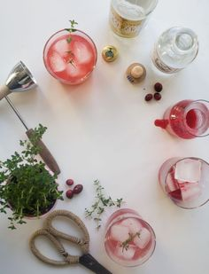 Cranberry and thyme gin and tonic