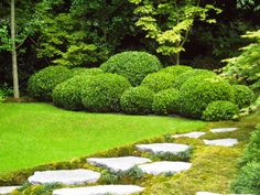 probably not any easier than just trimming the verge. Boxwood Garden, Garden Hedges, Topiary Garden, Topiary Trees, Garden Trees, Topiaries, Garden Art, Outside Plants, Garden Balls