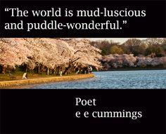 Enjoy twelve, essential #nature #quotations at -- http://www.examiner.com/article/twelve-essential-nature-quotations  -- #poetry