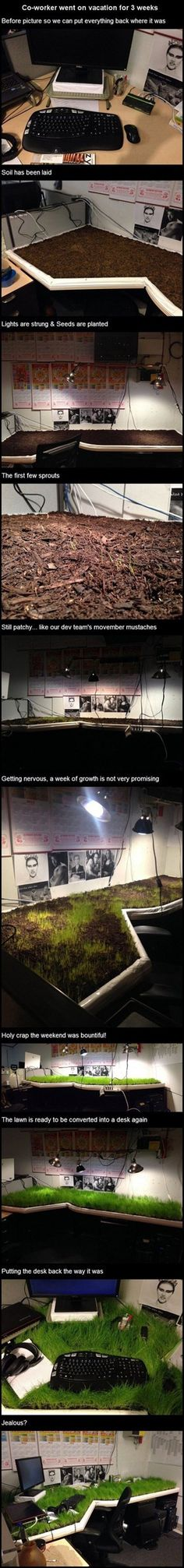 This could quite possibly be the most creative eco-friendly geek prank ever.