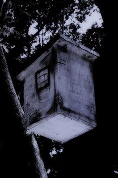 Fotoquimera: Casas siniestras...