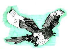 Sroka w locie #bird #animals #cartoon #fun #drawing