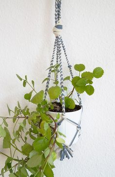 Add greenery and color by using an old t-shirt to craft a pretty macrame hanging planter.