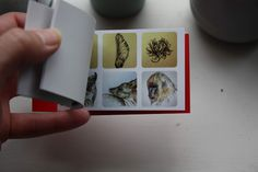 Sarah J. Loecker  : Mini sticker books available on my art blog just in time for christmas- 10 euros for 90 stickers Sticker Books, Sarah J, Art Blog, Art Supplies, Austria, My Arts, About Me Blog, Stickers, Fine Art