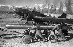 Torpedo for IL-4