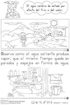 Estados-fisícos-del-agua-Percepción-visual.png (1992×2988)