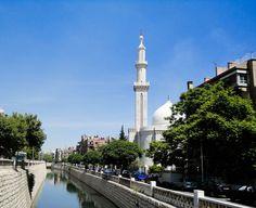 Damascus Malki