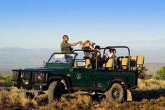 Kruger National Park (Open Vehicle Safari) | 4 Nights Kruger National Park, National Parks, South African Braai, Drive Time, Nocturnal Animals, Airport Hotel, Night Driving, Small Cat, Under The Stars