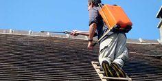 Quel est le prix d'un démoussage toiture ? : http://www.maisonentravaux.fr/toiture-couverture/toit-tuile-ardoise-zinc/prix-demoussage-toiture/