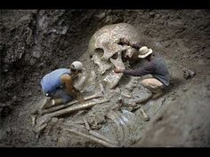 The Nephilim skeletons weren't termed giants or sons of God for no reason. The facts did exist, strong enough to take people aback. The fallen angels are. Giant Skeletons Found, Human Giant, Photo Choc, Rd Congo, Nephilim Giants, Nephilim Bones, Genesis 6, Human Skeleton, Skeleton Bones