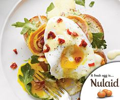 When you need a meal in a hurry, cook up Fried Egg Sandwiches. These open-faced egg sandwiches are true comfort food goodness with layers of pancetta, argula, and fried eggs on top of challah bread with savor hollandaise sauce spooned on top. For full recipe click on the link – http://ablog.link/3mh #Nulaid #Farmfresh