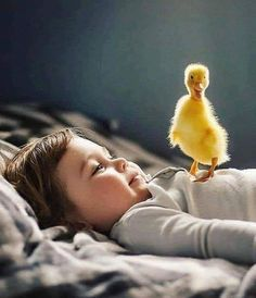 Funny Kids And Animals Sweets Best Ideas Precious Children, Beautiful Children, Beautiful Babies, Animals For Kids, Cute Baby Animals, Funny Animals, Cute Kids, Cute Babies, Animal Pictures