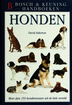 Honden - David Alderton