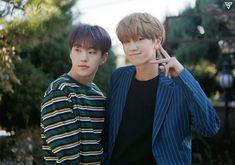 Hoshi & Minghao The8