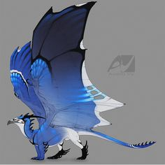 Dragon design: blue jay by AverrisVis Dragon 2, Manga Dragon, Fantasy Dragon, Fantasy Art, Fantasy Creatures, Mythical Creatures, Beautiful Dragon, O Pokemon, Dragon Pictures