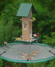 Songbird Essentials Seed Hoop Birdfeeder | zulily