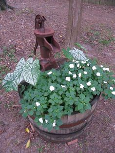 Half whiskey barrel planter with antique water pump