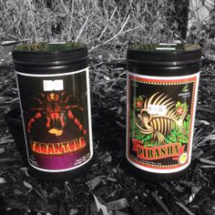 Advanced Nutrients Tarantula powder and Piranha powder beneficial bacterias etc etc currently on special offer at HG Hydroponics 40% from only £20.99 when its gone its gone!