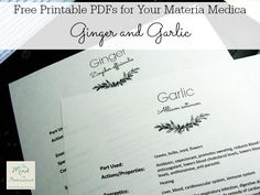 """Free Printable PDFs for Your Materia Medica Ginger and Garlic - The Mind to Homestead  For more printables, click on the link and find the sidebar heading """"Free Printables for Your Materia Medica/Herbal Notebook"""""""