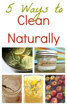 Clean Naturally Pin Collage