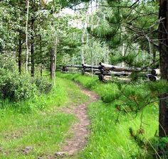 Hiking & Mtn Biking Trails - South Cariboo BC Information