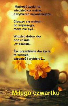 Beautiful Mind, Good Morning, Inspirational Quotes, Good Things, Pictures, Disney, Humor, Text Posts, Polish Sayings