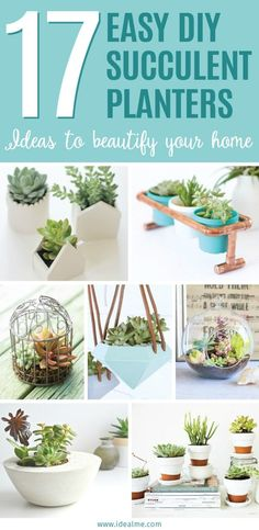 If you're looking to make a beautiful succulent planter, then the following 17 easy DIY indoor succulent planter ideas may be just what you're looking for.