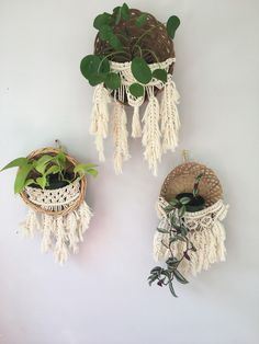 Swooning over these feathery macrame planter baskets! Basket Wall / Macrame Plant Hanger / Wicker / Vintage Wicker Basket / Wicker Basket Wall / Macrame Planter / Planter Baskets / Hanging Planter / Macrame Feathers / Boho Decor / Wall Decor / Decorating Ideas / Jungalow Style / Crazy Plant Lady