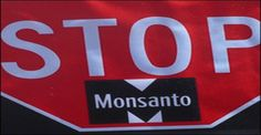 Monsanto Timeline Of Crime 1901-2014